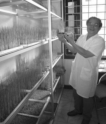 Nghiên cứu công nghệ sinh học: Mở lối mới cho nuôi trồng