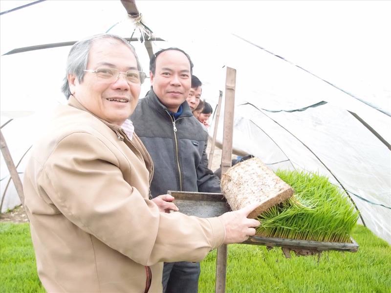 Tổng giám đốc -TS.Lê Văn Tri thăm một số đơn vị sản xuất mạ khay do Công ty CP công nghệ sinh học chuyển giao công nghệ