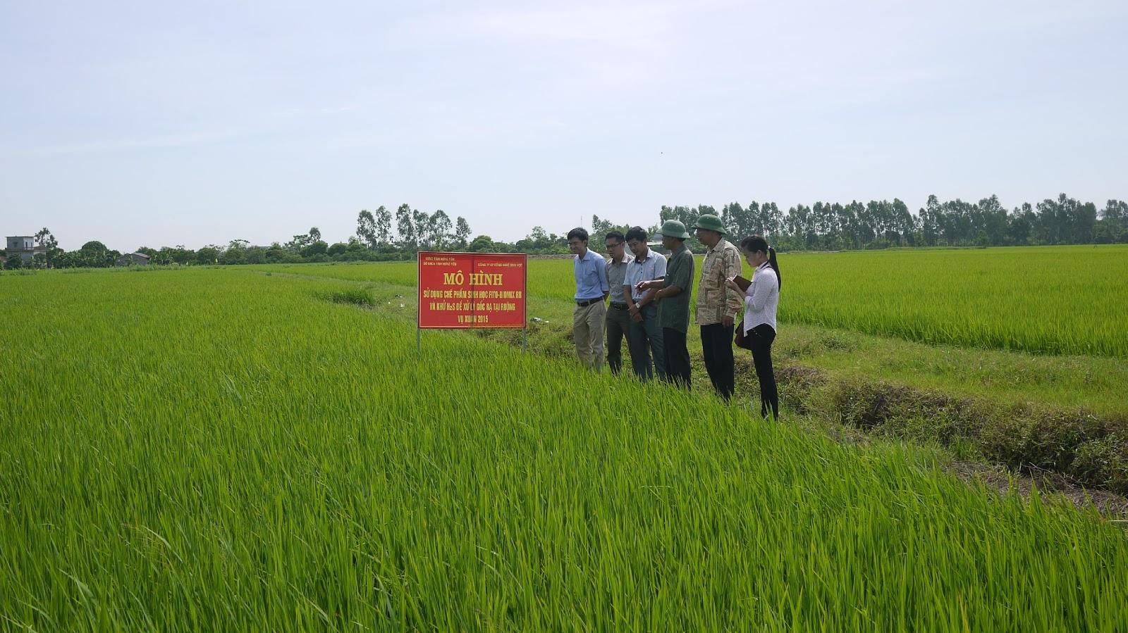 Kiểm tra tiến độ thực hiện đề tài, nhiệm vụ khoa học tại Hưng Yên