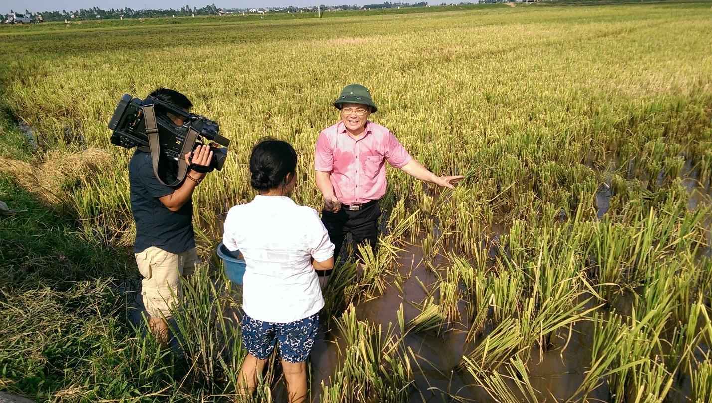 Tập huấn Xử lý gốc rạ tại ruộng tại Hưng Yên