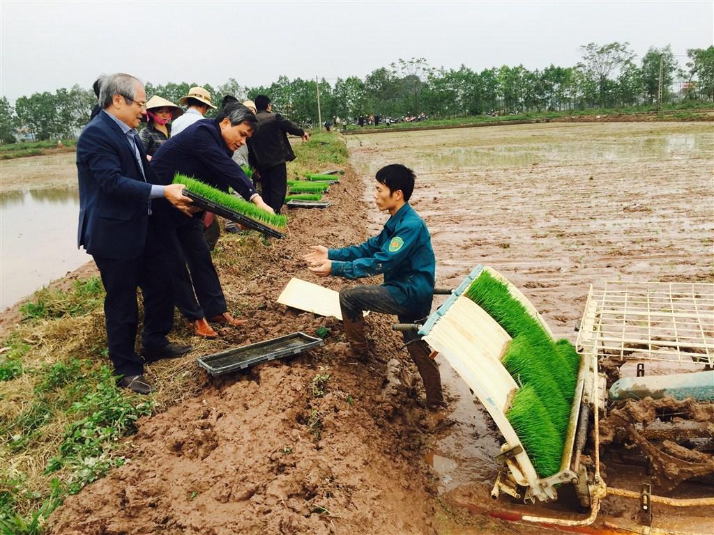 Kiểm tra mô hình sản xuất mạ khay cấy máy theo công nghệ BIOTECH tại Hà Nội